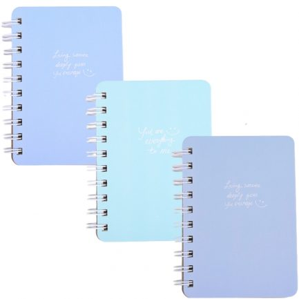 Basic Cute Mini Notebook Set Of 3 1
